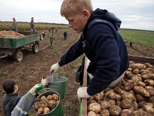 The many faces of forced labour in Belarus